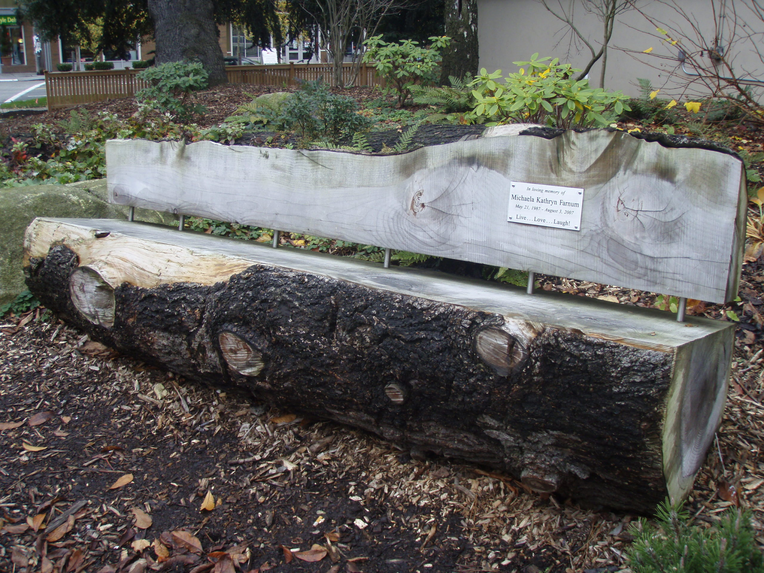 Solid log bench