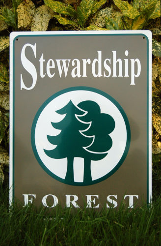 Stewardship Forest at Price Sculpture Forest park in Coupeville on Whidbey Island