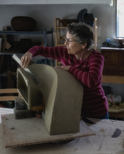 Jan Hoy sculptor will be exhibiting at Price Sculpture Forest park