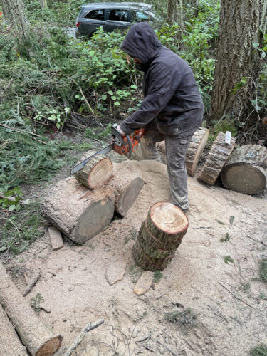 Artist Anthony May cutting logs to smaller working size at Price Sculpture Forest
