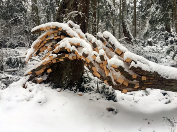 Anthony Heinz May Nature's Keystone snow Price Sculpture Forest park garden Coupeville Whidbey Island