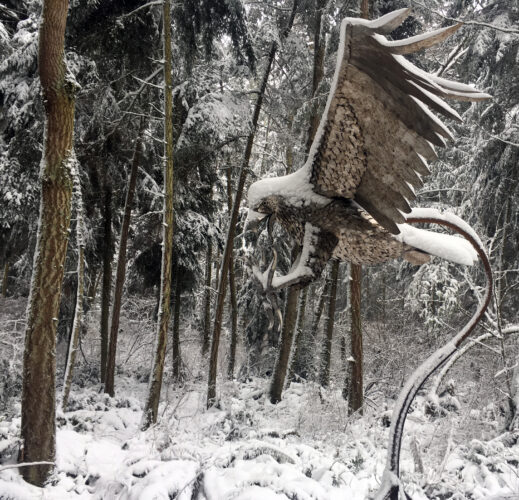 Greg Neal Attacking Eagle in snow at Price Sculpture Forest park garden Coupeville Whidbey Island
