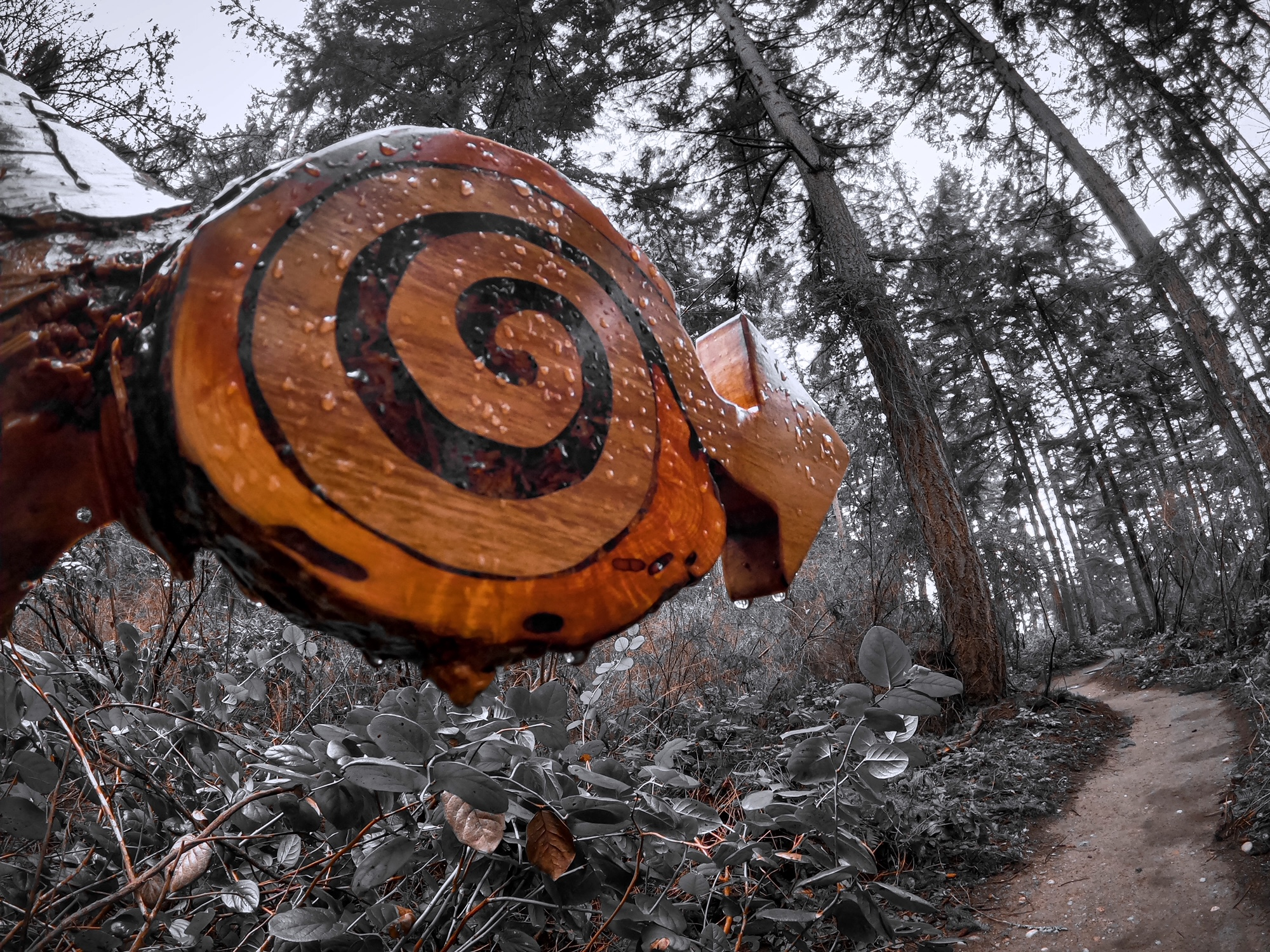 Jamie Webster of Clinton WA photo of Nature Nurtured sign inlay spiral by Michael Hauser, Ken Price, and Linda Hauser