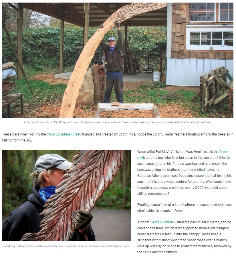This Is Whidbey Kate Poss article A Shower Of Feathers about Pat McVay including Icarus Was Here at Price Sculpture Forest