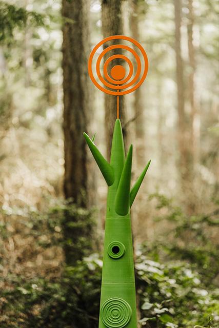 Andrew Woodard Life Tree - photo by Tiffany Matthews of Puyallup WA sashemphotography.com