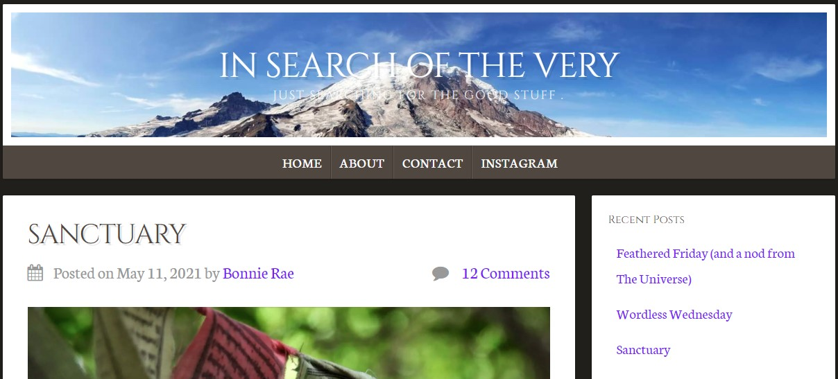 In Search of the Very article intro Sanctuary by Bonnie Rae