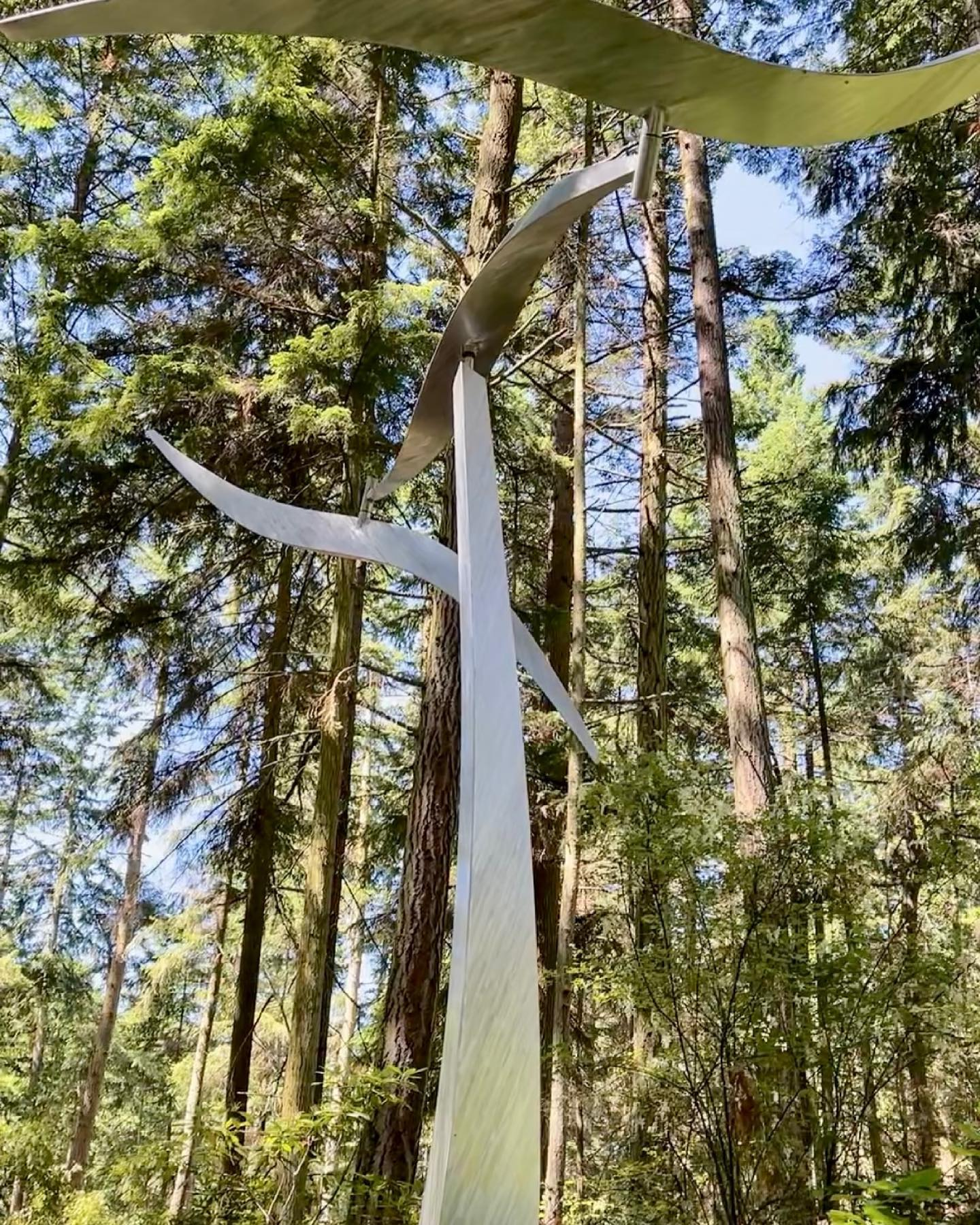 Wind Shear by Jeff Kahn at Price Sculpture Forest park garden in Coupeville Whidbey Island - photo by Sharon Kurtz of Dallas TX
